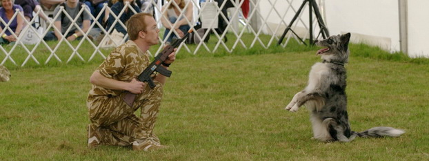Richard Curtis and Pogo of the K9 freestyle dancing dog display team