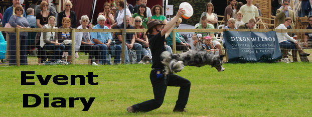K9 Freestyle dog displays
