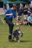 Pogo a member of the canine freestyle dancing dog display
