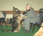 A handler and dog learning how to become a dancing dog